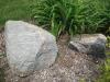Accent boulder